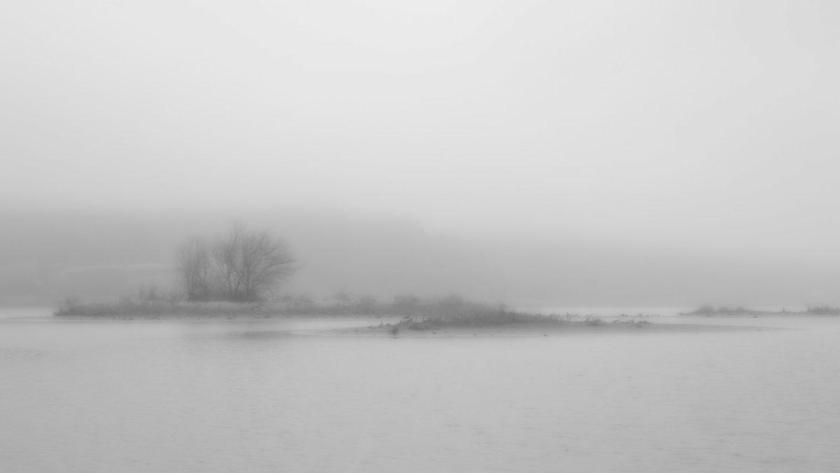 Rowena Fog