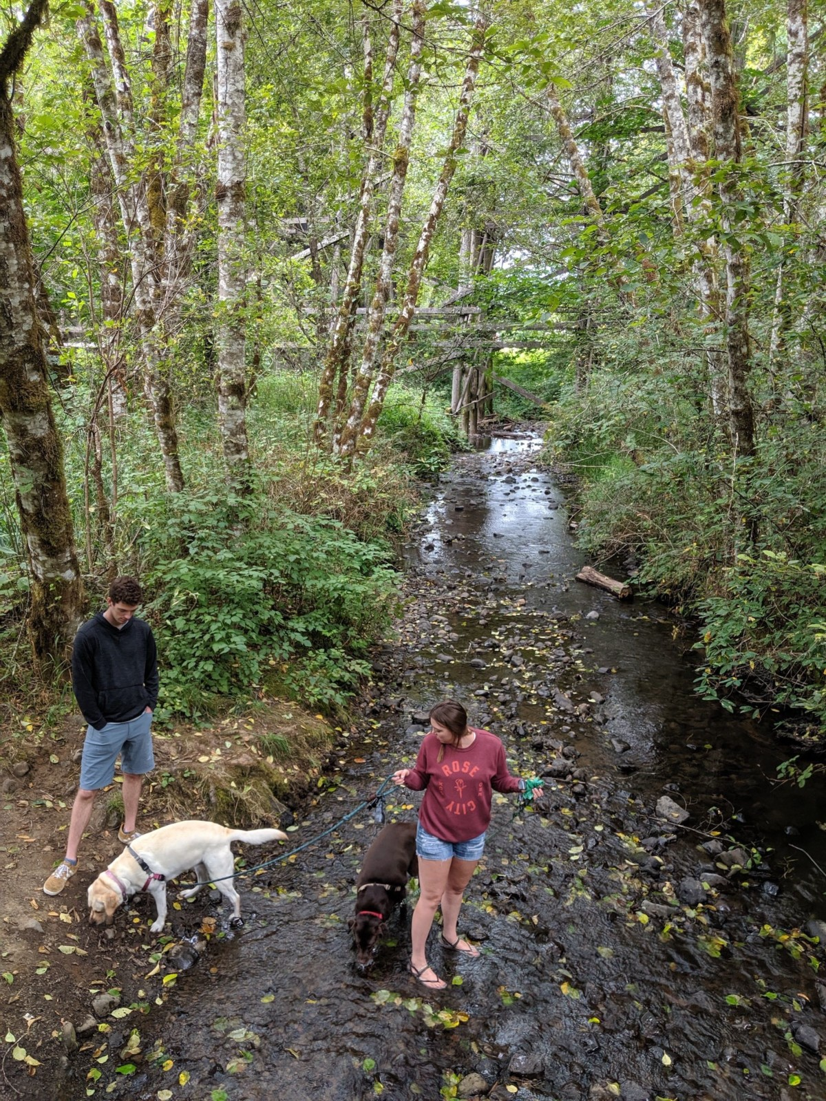 Melissa in the creek with Mousse and Gilligan